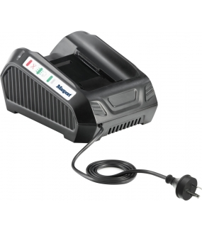 Energy Flex 42V 3A Battery Charger
