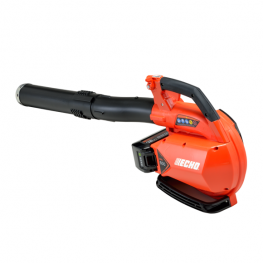 Echo Power Blower - Lithium-ion Package
